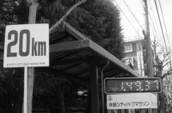 京都シティハーフマラソンを36歳年男が走った